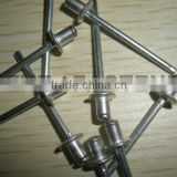 Domed head blind rivet