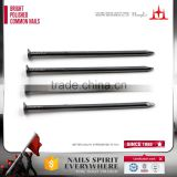 high quality low carbon steel wire nails, flat head common round iron nails,flat head round nails