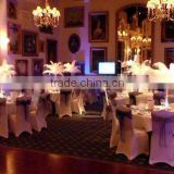 Party decorative artificial ostrich feathers