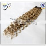 Wholesale top quality deep wave ombre color 100% brazilian virgin human hair weave                                                                                                         Supplier's Choice