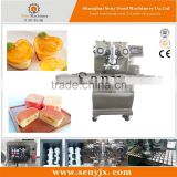 SY-900 automatic filled cake encrusting machine
