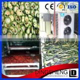 commercial banana/ lemon/ grape/ mango fruit drying machine/ fruit dryer