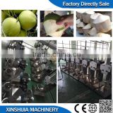 Automatic coconut peeling machine for sale