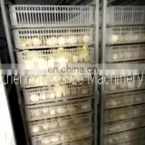 Miro-computer Control Automatic Cheap Egg Incubator for Sale