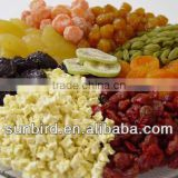 dry fruits(dried strawberry,dried apple ring,dried apple dice,dried apricot)