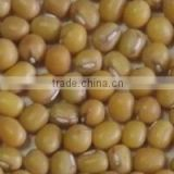 Organic yellow mung bean