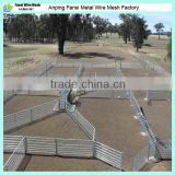 Flexible and durable sheep fence panel with high quality carbon steel bar (heavy duty/ australia standard)