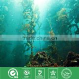 100% Natural Seaweed Kelp Extract Fucoxanthin 10% (CAS NO.:3351-86-8)--NutraMax Supplier