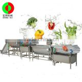 new product vegetable washing machine will ozone hot sale vegetable washing machine