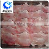 best selling products frozen stingray fish/Raja Porosa fillet