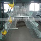 China broiler chicken farming from Factory-Commercial Poultry Housing/Broiler chicken cage