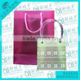Custom plastic bag,bag with tube transparent handle