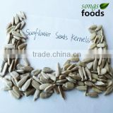 Sunflower Oil Price Bulk, Wholesale Sunflower Seeds