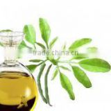 Wholesale Supplier Of Fresh Moringa Oil