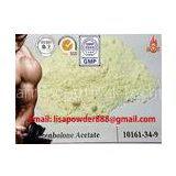 Natural Trenbolone Powder / 99% Purity Trenbolone Acetate Hormone , Protein Assimilation Hormonal