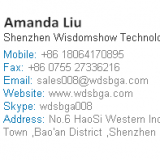 Shenzhen Wisdomshow Technology Co.,Led