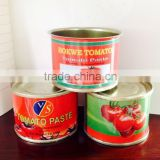 400g*24tins/ctn Nature Red High Quality Factor Price Canned Tomato Paste, tomato sauce ,ketchup