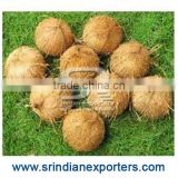 Bulk Pure Quality Coconut