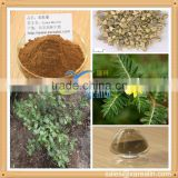 Sex Enhancer Natural Raw Material Tribulus Terrestris Extract Powder