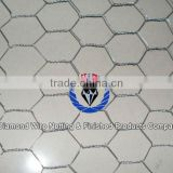 Low price chicken wire mesh,wire mesh galvanized welding,welded wire mesh rolls(electro or hot dipped)