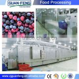 Vegetable And Fruit Quick Freezing Liquid Nitrogen Tunnel Freezer