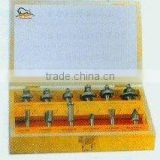 Tungsten carbide router bit sets-12pcs set-D (0861)