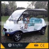 48V Battery Operated Golf Carts Utility Cart