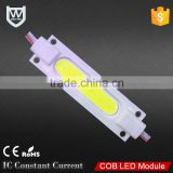 Zhongshan supplier beam angle 160 constant current IC 180lm 2watt injection cob power led module