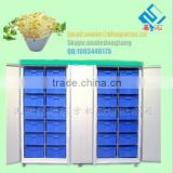 DF-60 bean sprouts machine /high quality wheat growing machine/ Stainless Steel Materal bean sprouts machine