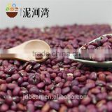 high quality red cowpea bean