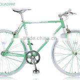 Sport Bike Japanese Design Road Bicycle cycle road race