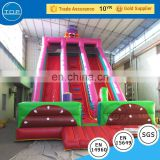 New design fabric material for making pumpkin bounce house bouncy castle slide with great price