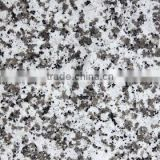 Granite tiles, Granite slabs,Granite stair from China GUANDONG cheapest price for oversea buyer