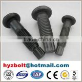 ASTM A325 Tension Control Bolt for Steel Structure