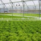 Most Popular Hydroponic NFT Channel pvc pipes