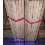 I'm very interested in the message 'Natural wooden broom handle' on the China Supplier