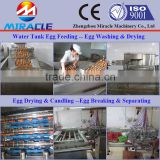 Safely chicken farm egg washing and cleaning machne new design egg breaking/egg white&yolk separation machine