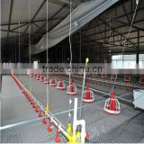 Sufficient supplies day old broiler chicks cage for sale for poultry equipment