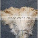 Factory warehouse Ostrich Feather Magic Wooden Handle Duster