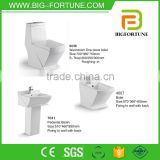 European style Washdown bathroom wc toilet set
