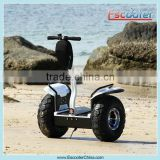Escooter Fashion and elegant appearance 2 wheel stand up electric tricycle scooter for sale, 8 color optional