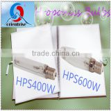 400W 600W plant growing hydroponics HPS bulbs