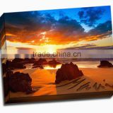 Matte polycotton blend artist painting inkjet canvas 390gsm