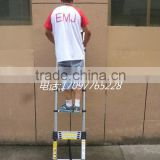 2.9m folding Climb Aluminium Telescopic Ladder