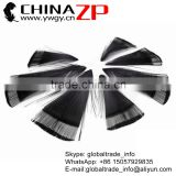 CHINAZP Factory Wholesale Selected Prime Quality Good Dyed Black Golden Pheasant Tippest Cape Feathers for Dress Decorations