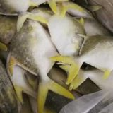 Golden Pompano/ Pomfret/ Farm raised frozen seawater fish