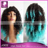 Two tone layer afro kinky curl synthetic machine made wigs celebrity wig Sunny Grace Hair synthetic wig