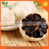 Manufactory Supply Hot Sale black garlic