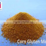 Corn Gluten Meal With Best Quality And Reasonable Price