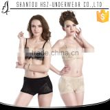 HSZ-8995 Modern design womens best padded panty bottom shapewear women panty wholesale women shapewear padded panties